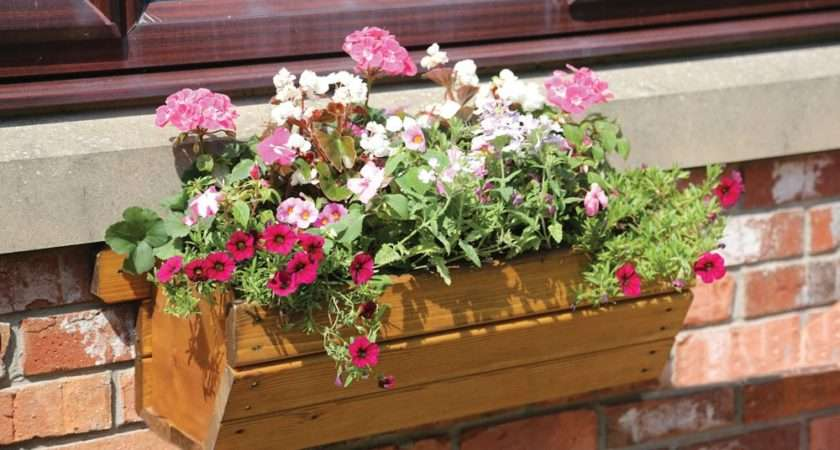 Eden Wooden Window Box Small