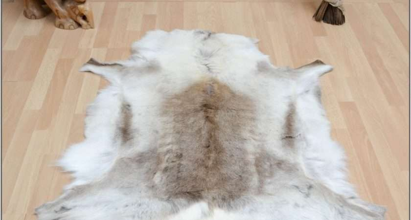 Fake Animal Skin Rugs Allaboutyouth