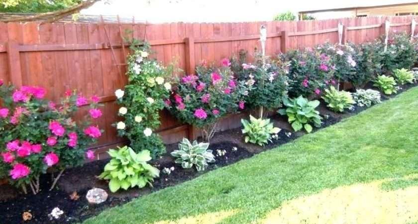 Fenceline Landscaping Contemporary Garden Ideas Along