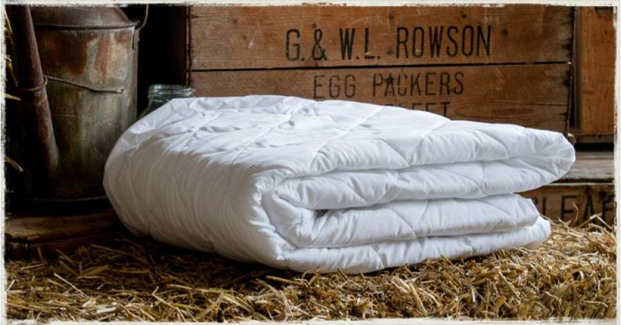 Fitted Mattress Protector Get Laid Beds