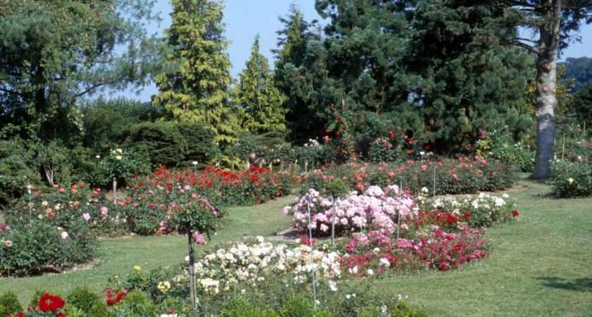 Flower Garden Photos
