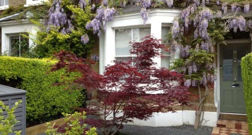 Front Garden Design Ideas Yard