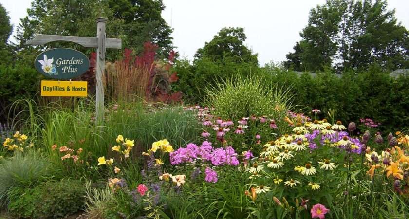 Funny Gardens Garden News Babylon