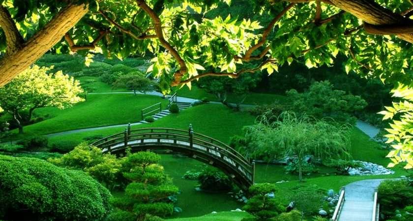 Garden Best