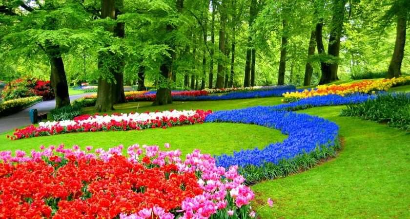 Garden Decoration Idea Enhancedhomes
