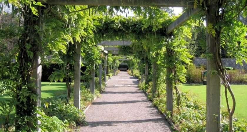 Garden Design Ideas Pergolas Landscape Construction Ltd