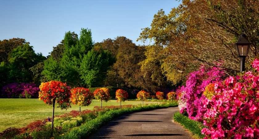 Garden Designing Tips Improvement Guide Gives