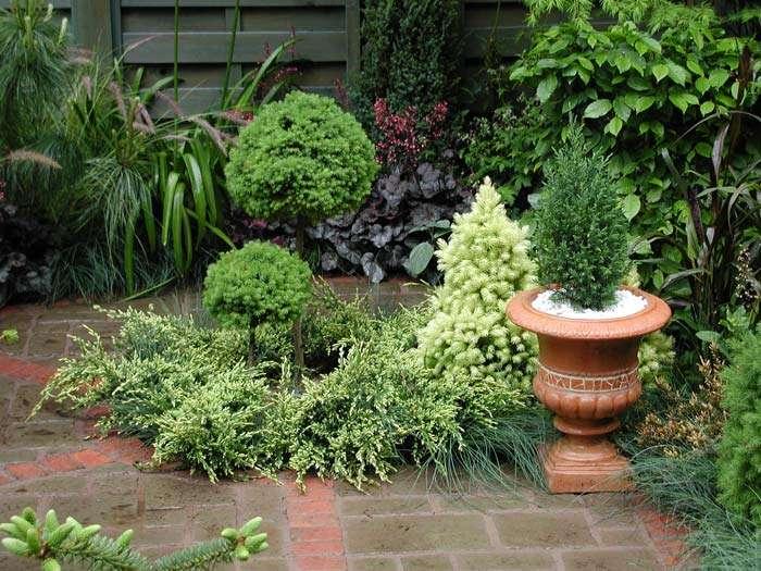 Garden Designs Small Gardens Ideas Home