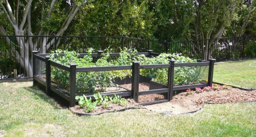 Garden Fence Ideas Design Modern Home Exteriors