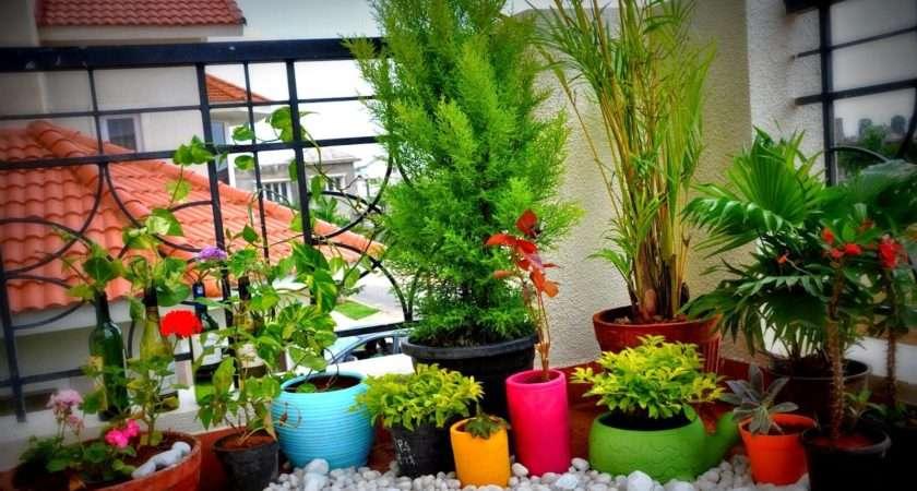 Garden Ideas Balcony Design Terrace