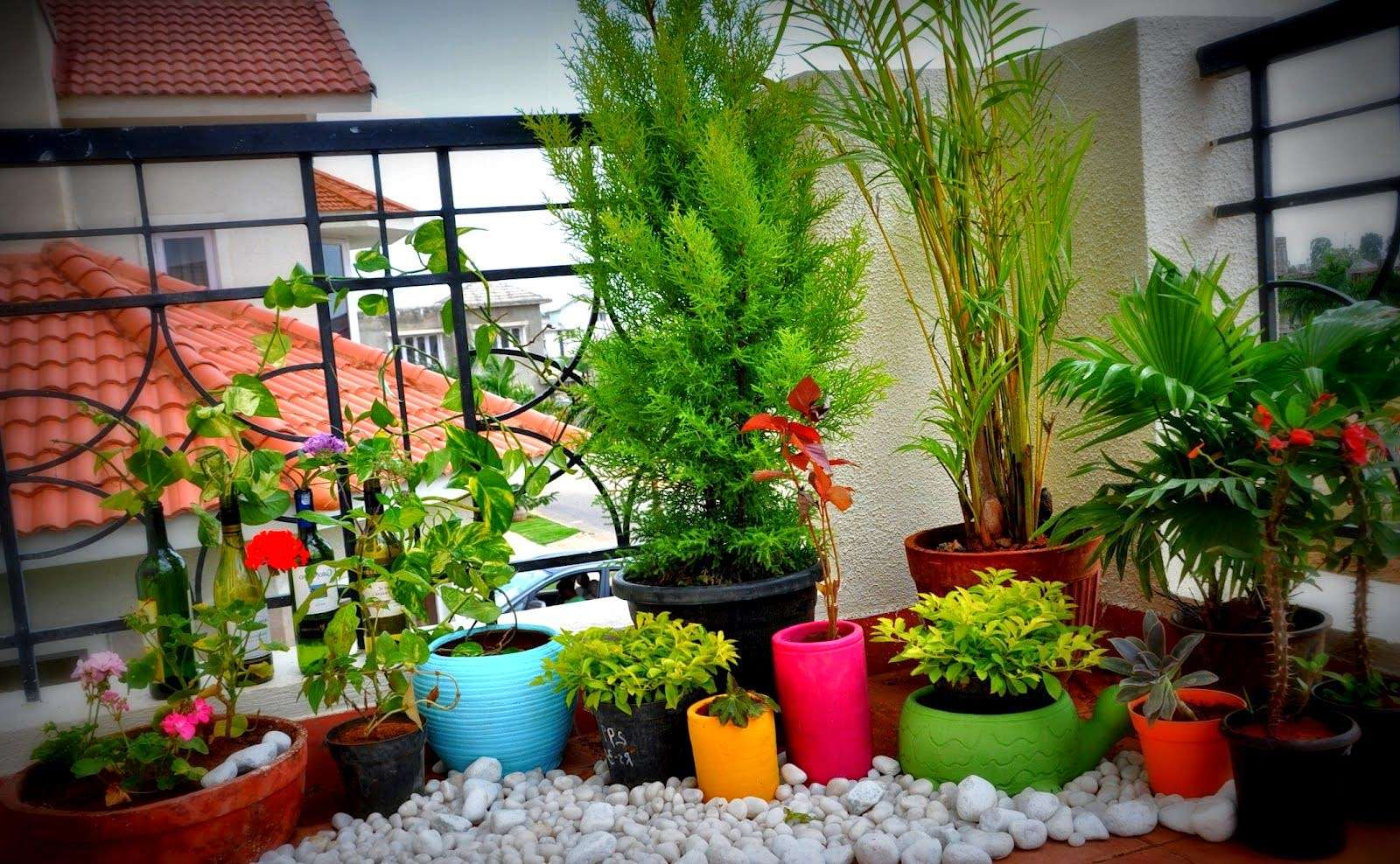 Garden Ideas Balcony Design Terrace