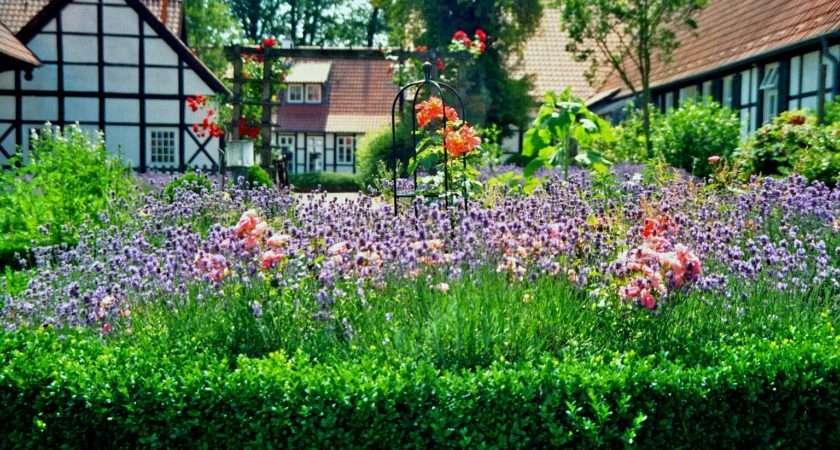 Garden Ideas Plans Experienced Landscape Gardener