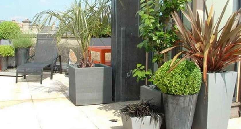 Garden Ideas Rooftop Backless Maxi