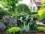 Garden Inspiration Tours April Peace Tree Farm