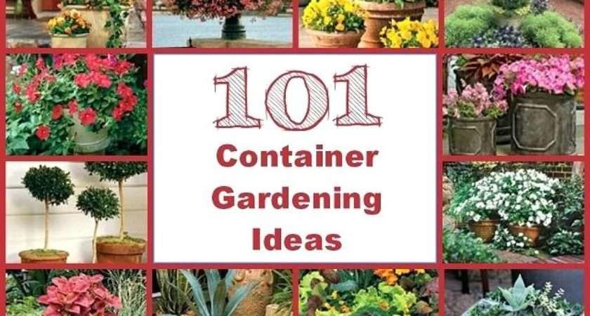 Garden Planter Ideas Container Gardening Outdoor
