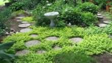 Garden Stepping Stone Design Ideas Inspirationseek