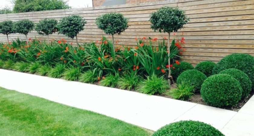 Gardening Tips Our Expert Stone