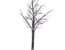 Gisela Graham Twig Snowy Paper Tree