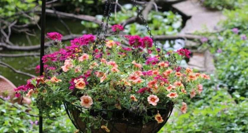 Gorgeous Flower Planter Ideas Home Gardens