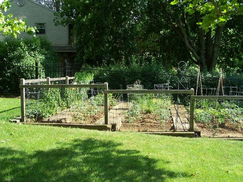 Simple Garden Fence Ideas vegetable garden deer fence ideas simple vegetable garden fencing Green Lawn Small Garden Simple Fences Ideas