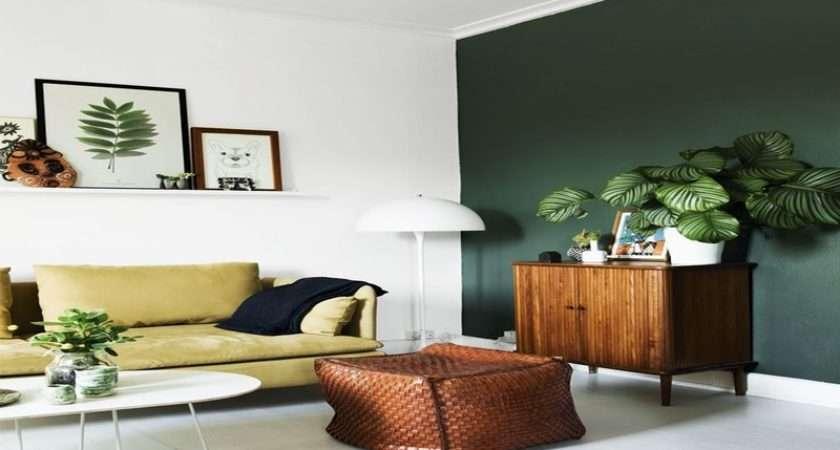 Green Wall Living Room Orange Color