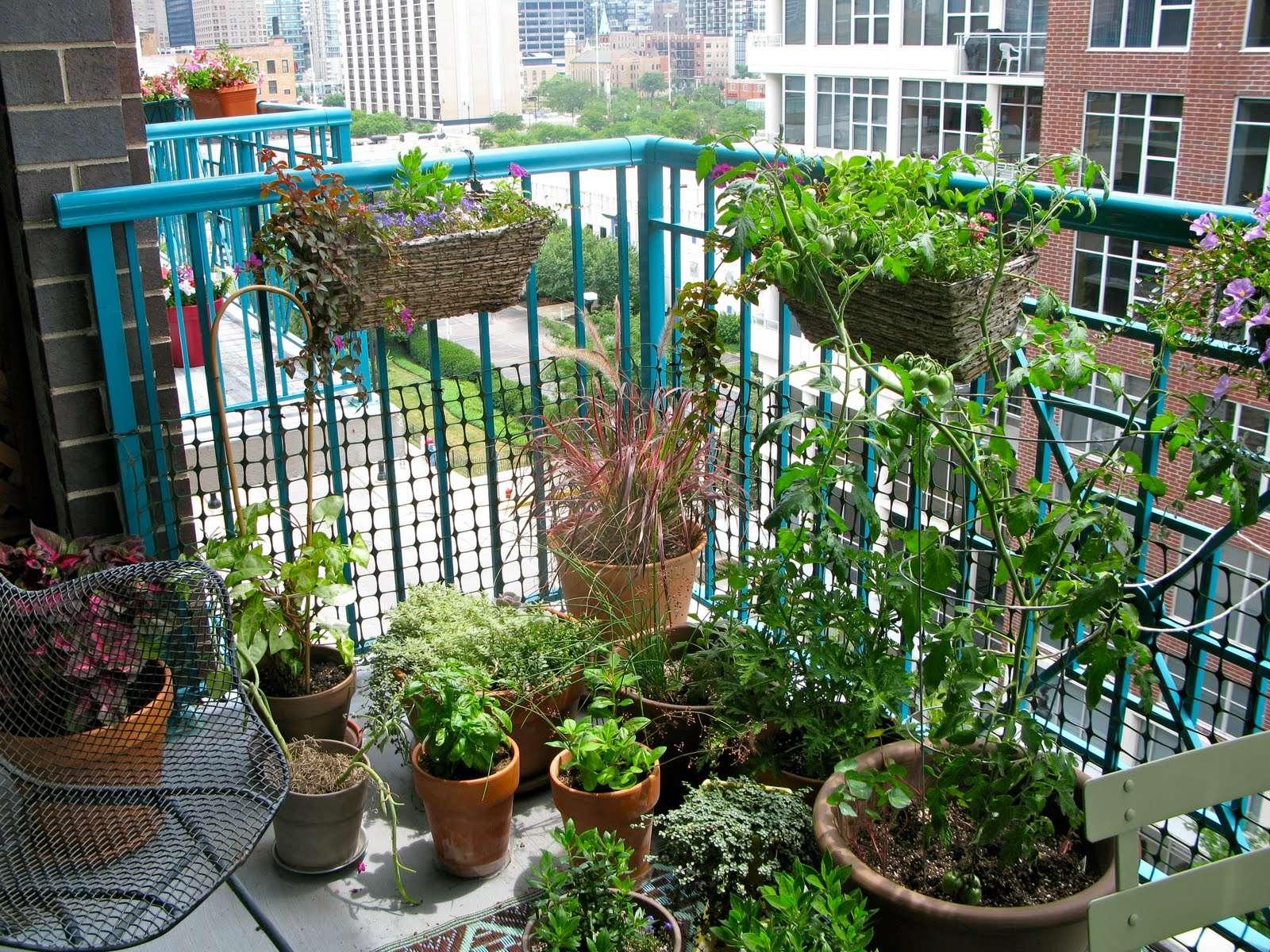 Herb Container Garden Source Lifeonthebalcony