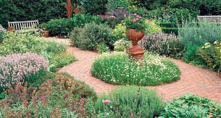 Herb Gardening Tips Beginners Living Blog