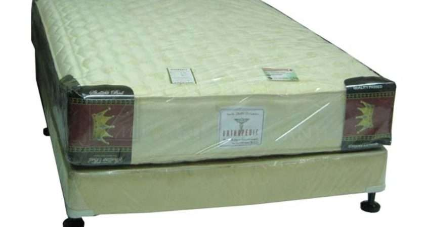 Home Furniture Bedroom Mattresses Shelltex Orthopedic Mattress
