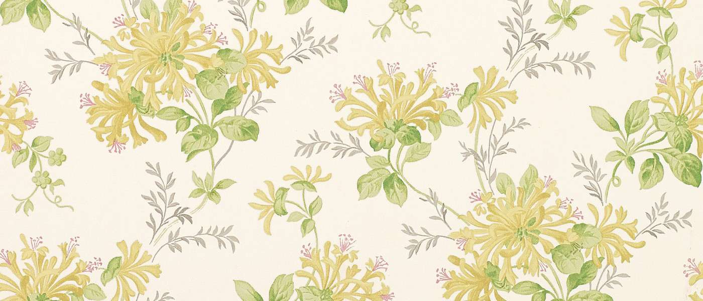 Honeysuckle Trail Camomile Yellow Floral Laura Ashley