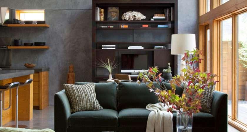 Ideas Contemporary Living Room Designs