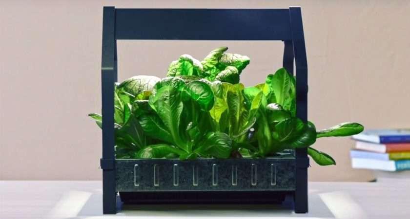 Ikea New Indoor Gardening Kit Never Stops Growing Food Industry