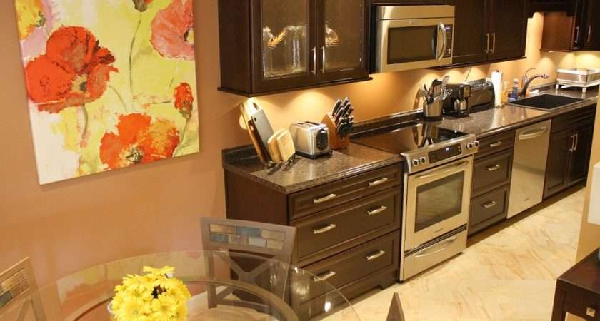 Kitchen Aid Appliances Quietest Dishwasher Shhhhh