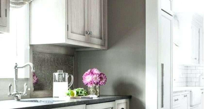 Kitchen Cabinets Colors Designs Cabinet Color