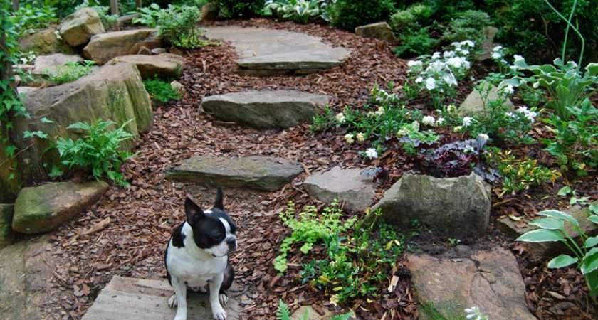 Landscape Designs Moss Stone Gardens