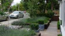 Landscaping Front Garden Ideas Modern