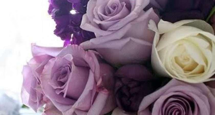 Lavande Palette Couleurs Mariage Weddbook