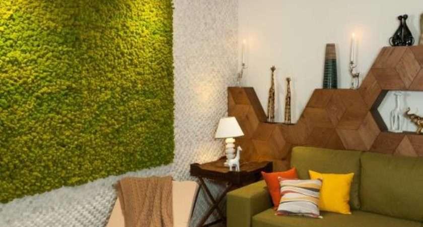 Living Moss Interior Design Ideas Care Tips