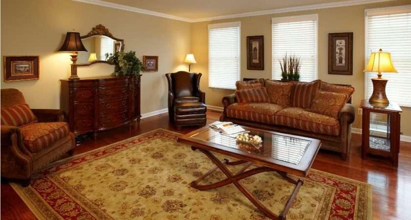 Living Room Area Rugs Ideas Peenmedia