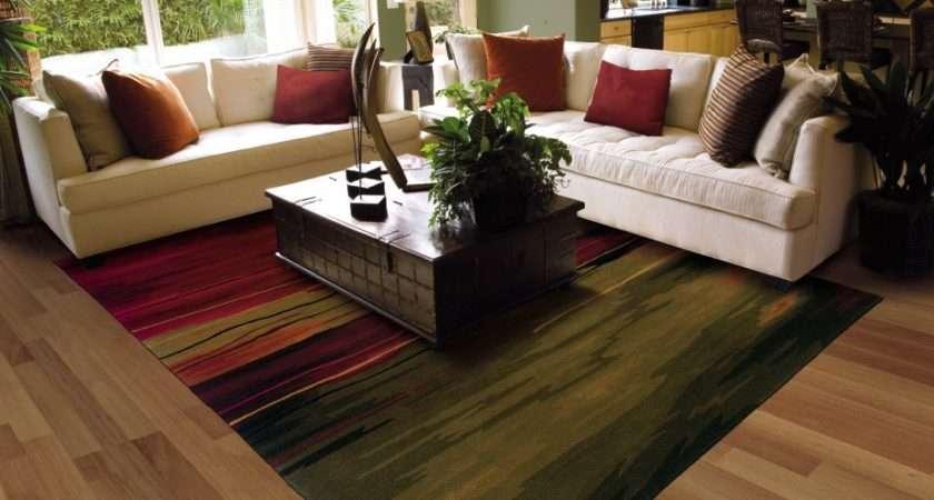 Living Room Ideas Modern Items Area Rug