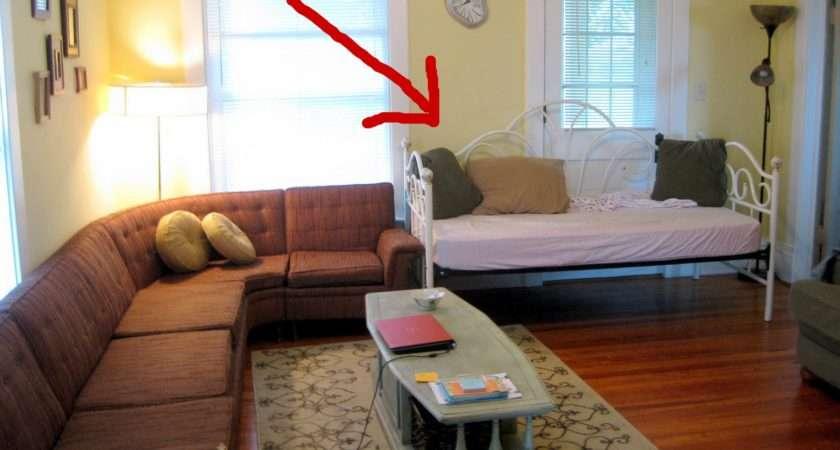 Living Room Manipulation Sawdust Embryos