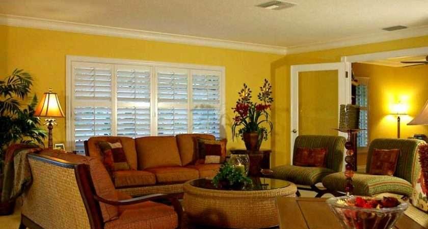 Living Room Paint Color Ideas Warm Atmosphere Design