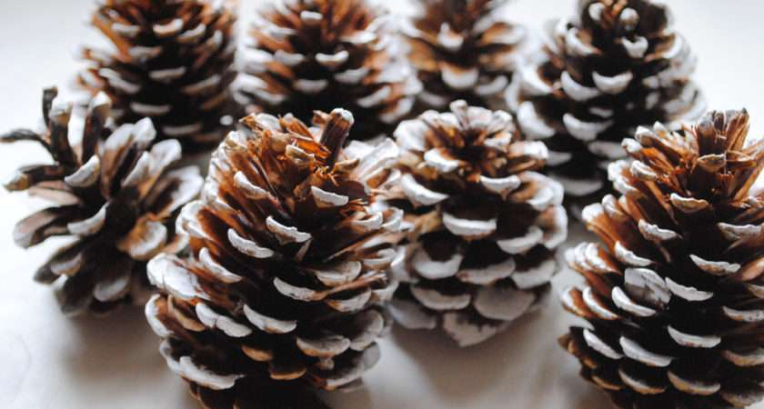 Love Decorating House Pine Cones Christmas Holidays