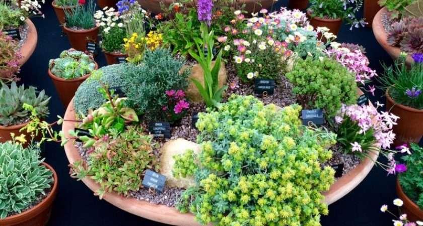 Love Your Pots Inspiring Practical Ideas