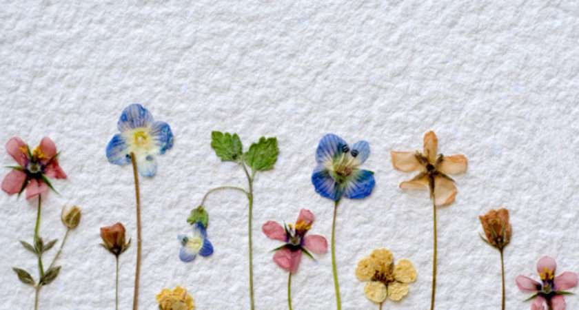 Make Dried Flower Wall Quilt