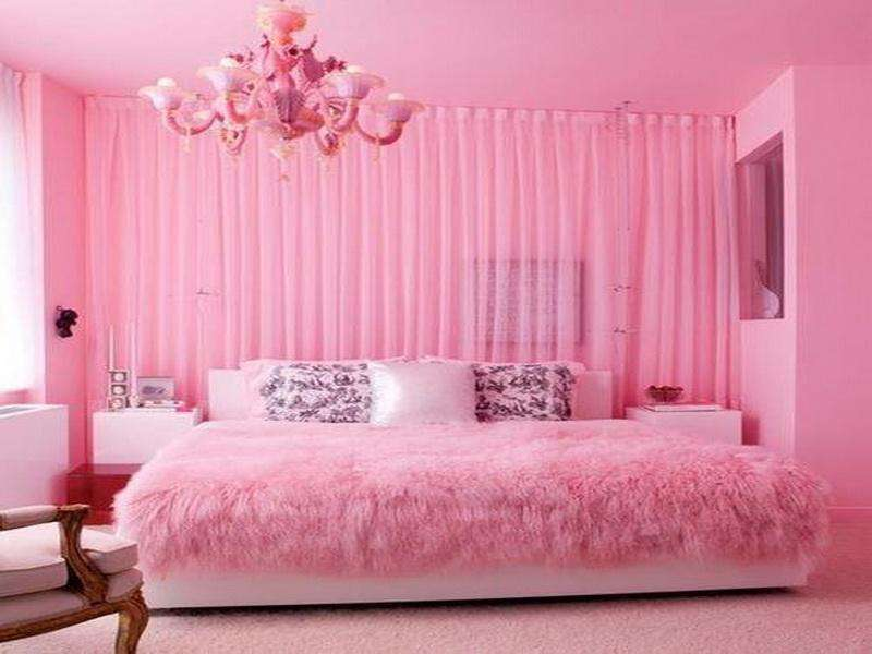 Miscellaneous Hot Pink Bedroom Awesome Accessories