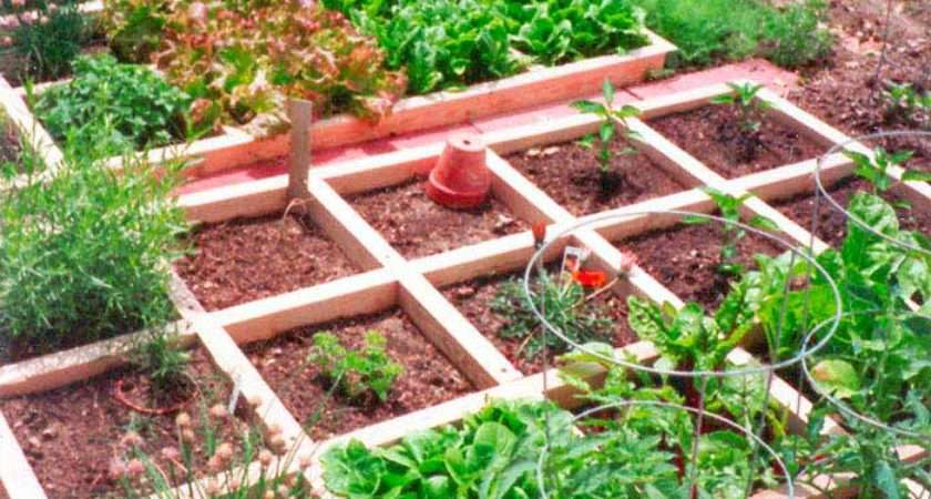 Mountain Gardening Small Space Vegetable