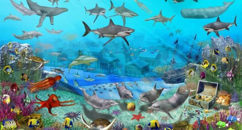 ... Childrens Bedroom Wall Murals Uk Awesome Design