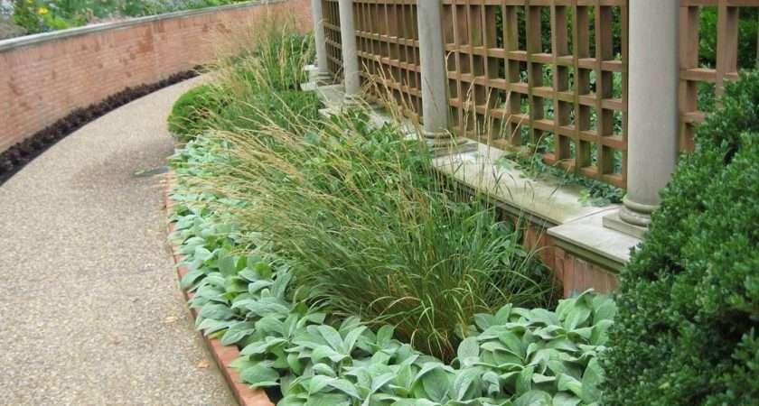 Narrow Garden Design Ideas Second Sun
