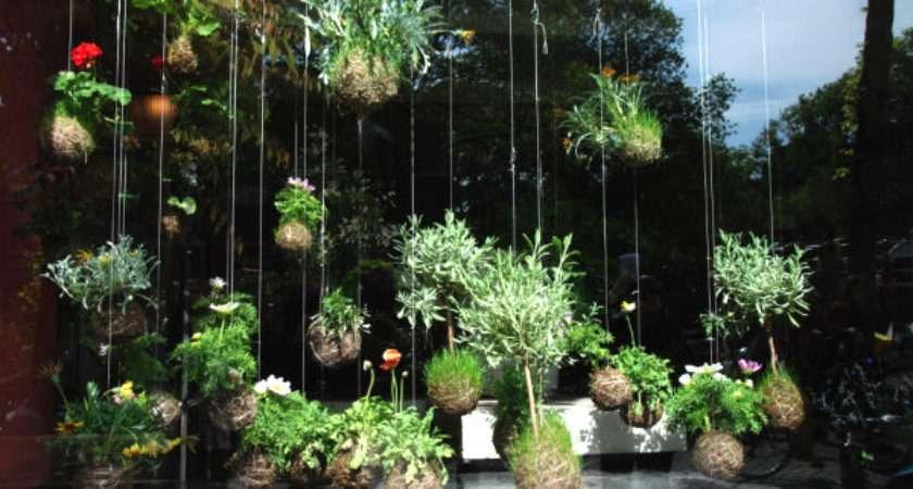 New Gardening Ideas Spring