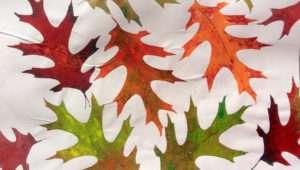 Oak Leaf Artfoamies Foam Stamp Etsy